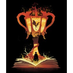 Camiseta de Harry Potter: Copa de los 3 Magos