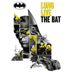 Póster Batman 80 aniversario